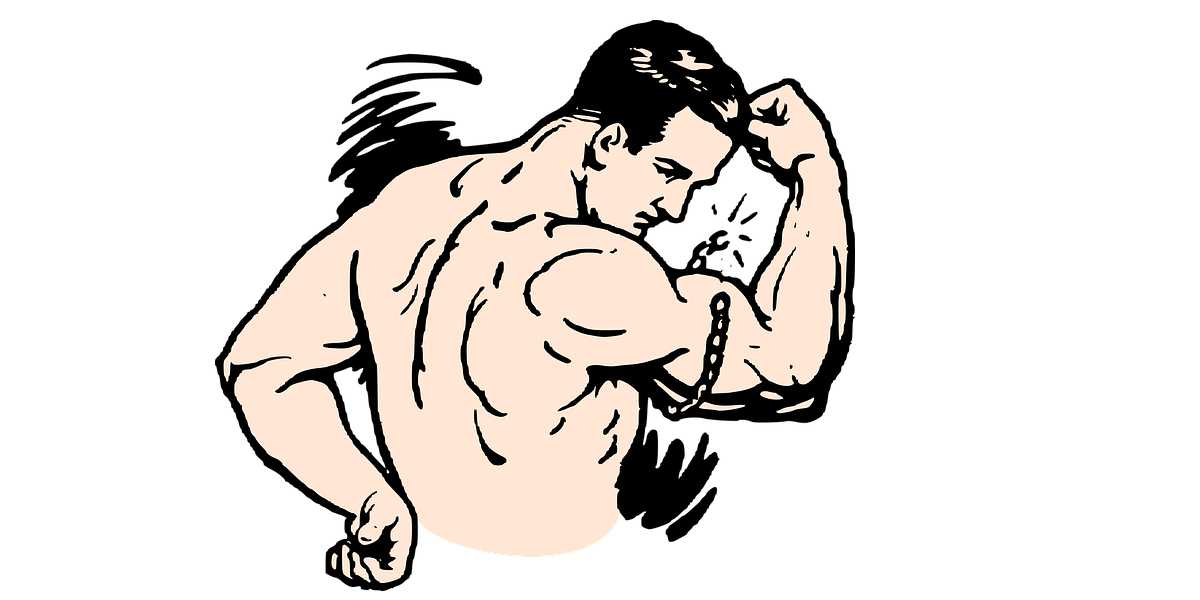How to Build Muscles?