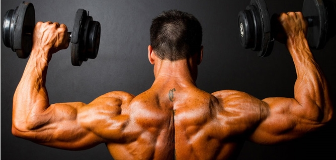 Body Building Exercise