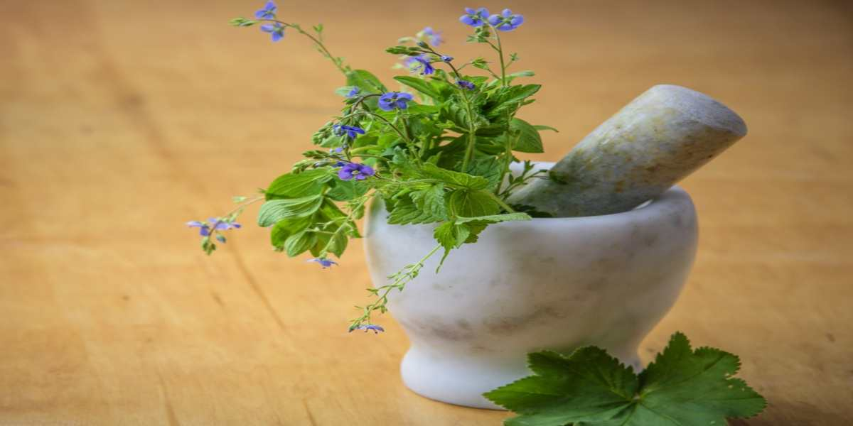Natural Hemorrhoid Treatments