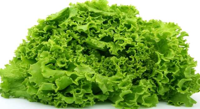 Dark Gree Leafy Vegetable