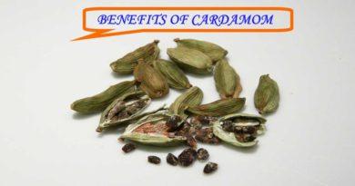 Benefits of Cardamom